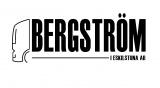 Bergström i Eskilstuna AB logotyp