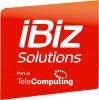 iBiz Solutions logotyp