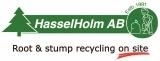 HasselHolm AB logotyp