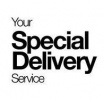 Your special delivery service logotyp